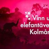 Vinn  ett elefantäventyr på Kålmården i 5-stjärnigt boende