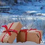 Vinn i Visit Gotland julkalender